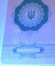 Диплом - свечение УФ (Одесса)